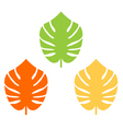 Exotic leaves colorful collection for your design vector image vector image