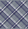 gray diagonal plaid seamless pattern vector image vector image
