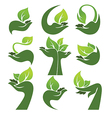 leaves and hands vector image vector image
