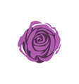purple rose flower icon design template isolated vector image