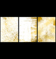 set golden texture backgrounds vector image