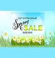spring background with daffodil narcissus flowers vector image vector image