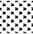 canadian bear pattern seamless vector image