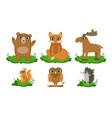 cute woodland animals set owl hedgehog bear vector image vector image