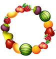 Frame design with fresh fruits vector image