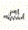 Just married Brush lettering vector image vector image