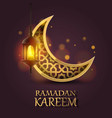 ramadan kareem cover mubarak background vector image vector image