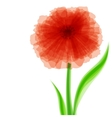 Red transparent flower vector image vector image