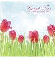 Spring postcard with flowers vector image