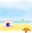 Summer pearls beach background vector | Price: 1 Credit (USD $1)