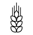 wheat icon outline style vector image vector image