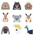 Australian animals flat icons vector image