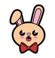 bunny kawaii cartoon vector image