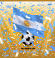 argentina national flag and soccer ball vector image