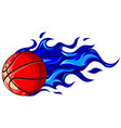 basketball on a white vector image