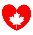 canadian maple leaf on a red heart - i love canada vector image vector image