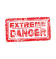 extreme danger red grunge rubber stamp vector image vector image