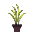 home plant vase vector image vector image