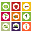 round icons vegetables on color background vector image vector image