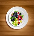 berry plate realistic vector image