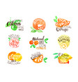 fesh citrus juice promo signs colorful set vector image vector image