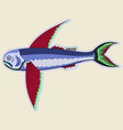 flying monster fish with large red fins vector image