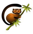 lemur vector image vector image