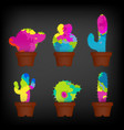 colorful cactuses in a pots set colorful concept vector image