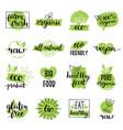 eco organic bio logos or signs vegan vector image