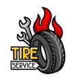 Tire service business Repair concept vector image