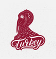turkey hand written lettring logo label vector image
