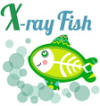 XrayFish vector image