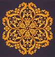 beautiful round ornamental element for design in vector image vector image