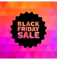 Black Friday Sale on geometric bright background vector image vector image