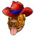 bulldog dog sombrero mexican hat portrait of vector image vector image