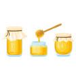 cartoon honey jars glass pots and wooden spoon vector image