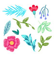 collection flowers leaves vector image