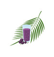 superfood acai berry glass juice and leaves vector image vector image