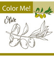 education coloring page with vegetable hand drawn vector image