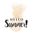 hello summer pineapple silhouette vector image