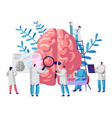 laboratory scientist group study human brain vector image