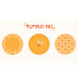 pie icons whole traditional pumpkin pies with vector image