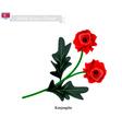 Tuberous Begonia Flower or Kimjongilia Flower vector image vector image