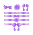 Violet Ribbon and Bow Set for Birthday and vector image