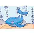 whale animal with seaweed plants hanging vector image vector image