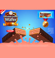 chocolate wafer with strawberry cream ads vector image vector image
