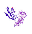fantasy decorative twigs with leaves and berries vector image vector image