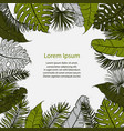 palm sunday christian feast holiday tropical vector image