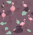pink flamingo cute african bird seamless vector image vector image
