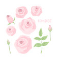 romantic wedding concept with rose vector image vector image